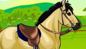 Dress Up a Horse