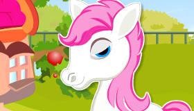 Pony Daycare