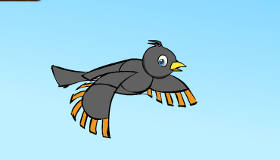 The Odd Math Bird