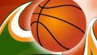 Basketball Pro Player
