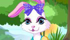 Cute Animal Game for Girls