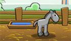 Open a Horse Ranch