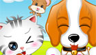 Animal Vet Caring