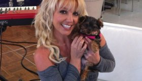 Britney goes Canine Crazy!