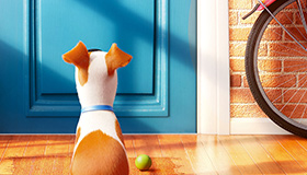 Hidden Objects in The Secret Life of Pets