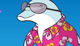 Dolphin Dress Up