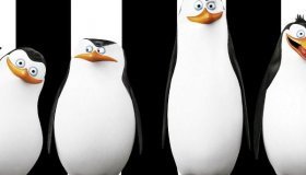 Commander, Rico, Kowalski and Private are back - in their own full-length movie!