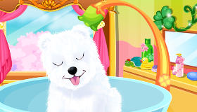 Puppy grooming for girls
