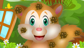 Cute Squirrel Game