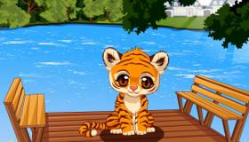 Baby Pet Tiger