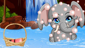 Pet Stars Funny Elephant