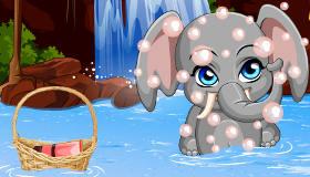 Pet Stars Funny Elephant