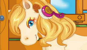 Care for the Pony
