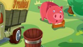 Girls' Farming Management
