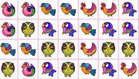 Match the Birds
